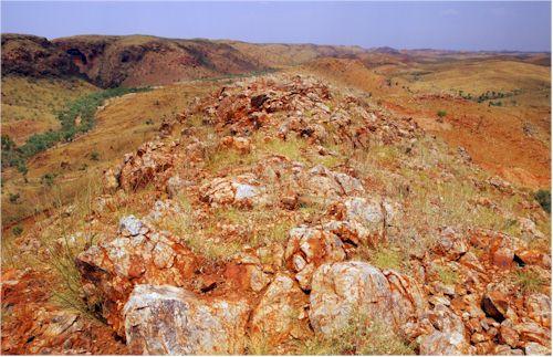 Moly Mines